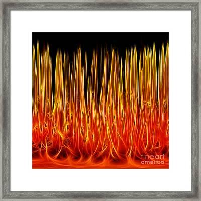 Floral Flames Framed Print by Kaye Menner