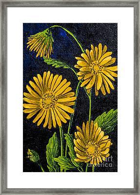 Flowers Framed Print by Svetlana Sewell