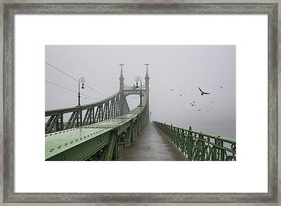 Foggy Day In Budapest Framed Print by Ayhan Altun