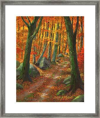 Forest Light Framed Print by Frank Wilson
