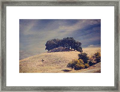From On High Framed Print by Laurie Search