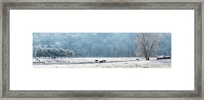 Frosty Morning Framed Print by Bill Wakeley