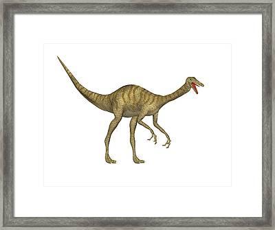 Gallimimus Dinosaur Framed Print by Friedrich Saurer
