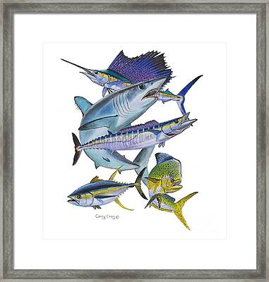 Gamefish Collage Framed Print by Carey Chen