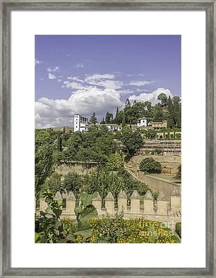 Gardens Of La Alhambra Framed Print by Dragomir Nikolov