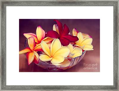 Gifts Of The Heart Framed Print by Sharon Mau
