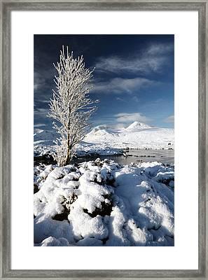 Glencoe Winter Framed Print by Grant Glendinning