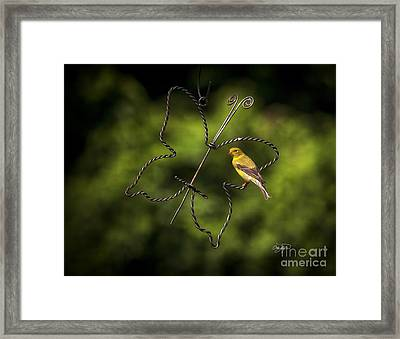 Golden Hour Framed Print by Cris Hayes