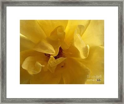 Gracefully Yellow Framed Print by Geri Glavis