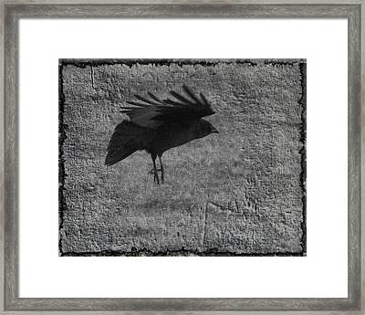 Gray Framed Print by Gothicolors Donna Snyder