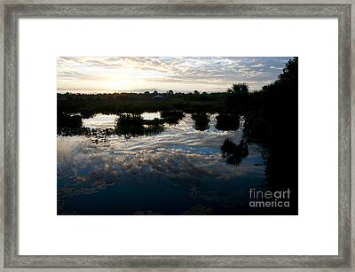 Green Cay Wetlands, Fl Framed Print by Mark Newman
