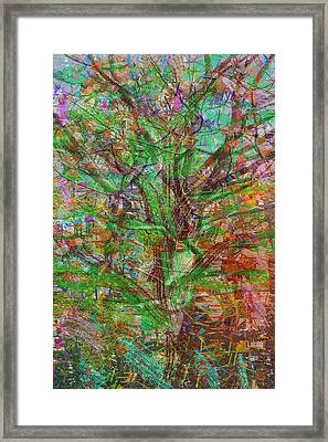 green theme abstract tree leaf dense wild estate Pure abstract view carefully and find some thing ne Framed Print by Navin Joshi