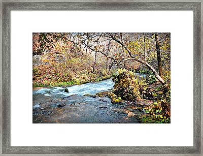 Greer Spring  Framed Print by Marty Koch