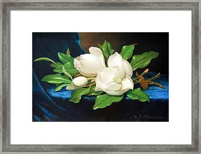 Heade's Giant Magnolias On A Blue Velvet Cloth Framed Print by Cora Wandel