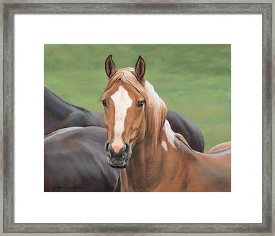 Heads Up Framed Print by JQ Licensing