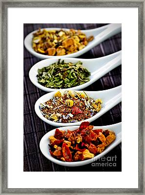 Herbal Teas Framed Print by Elena Elisseeva