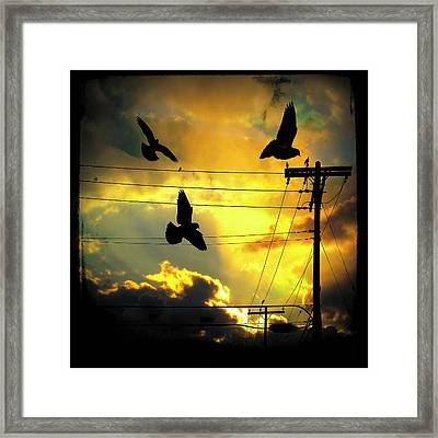 Here Comes The Sun Framed Print by Gothicolors Donna