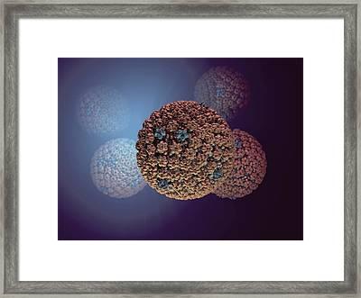 Herpes Simplex Virus Framed Print by Hipersynteza
