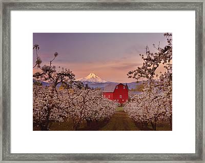 Hood River Sunrise Framed Print by Darren  White