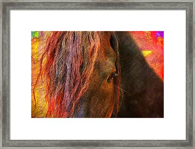 Horse  Framed Print by Mark Ashkenazi