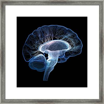 Human Brain Complexity Framed Print by Johan Swanepoel