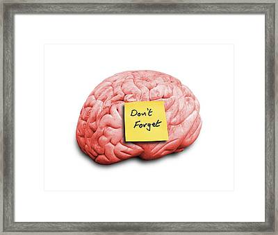 Human Brain With An Adhesive Note Framed Print by Victor De Schwanberg