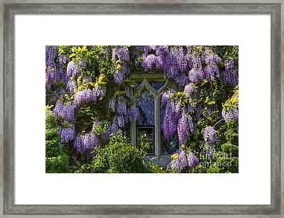 In Bloom Framed Print by Svetlana Sewell