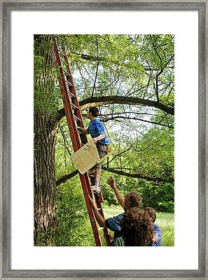 Installing A Nesting Box Framed Print by Jim West