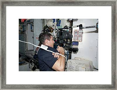 International Space Station Ant Research Framed Print by Nasa