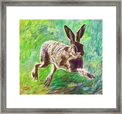 Joyful Hare Framed Print by Helen White