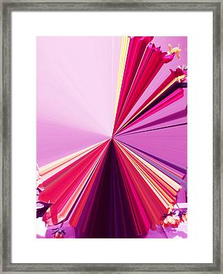 La Vie En Rose 18 Framed Print by Rozita Fogelman