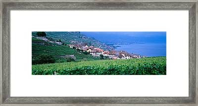 Lake Of Geneva, Vineyards, Rivaz Framed Print by Panoramic Images