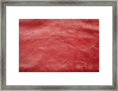 Leather Framed Print by Tom Gowanlock