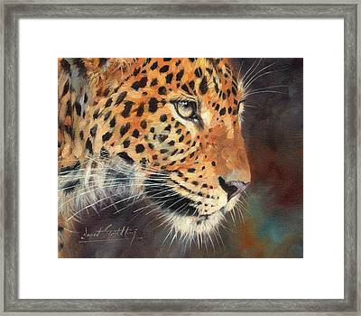 Leopard Framed Print by David Stribbling
