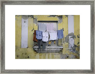 Let It All Hang Out Framed Print by A Rey