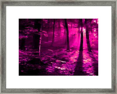 Life 3 Framed Print by Robin Curtiss
