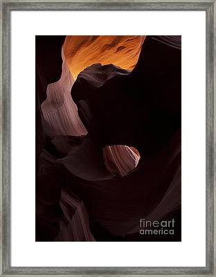 Light In The Eye Framed Print by Mike Dawson