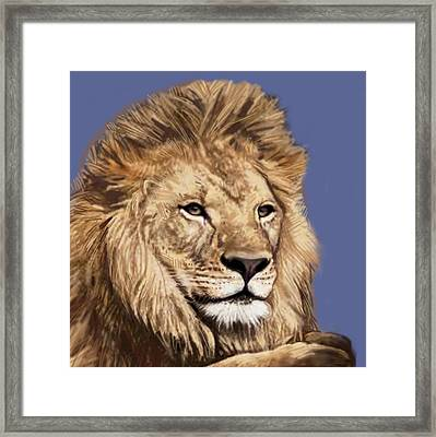 Lion Stylised Pop Art Drawing Potrait Poser Framed Print by Kim Wang