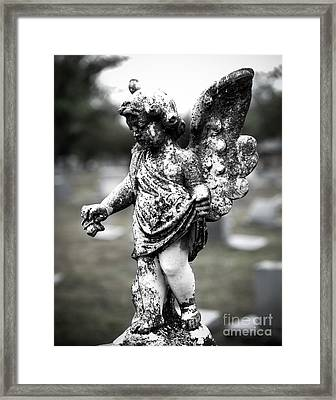 Little Angel Framed Print by Sonja Quintero