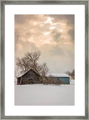 Loneliness Framed Print by Steve Harrington