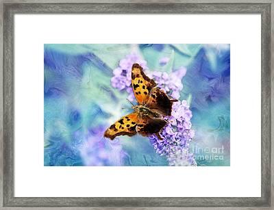 Lost In Beauty Framed Print by Betty LaRue