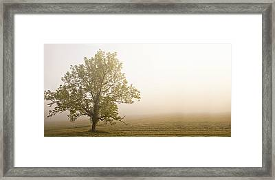 Lost In The Fog Framed Print by Andrew Soundarajan