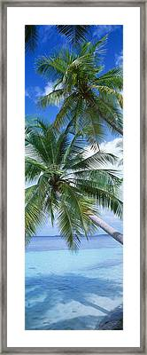 Maldives Framed Print by Panoramic Images