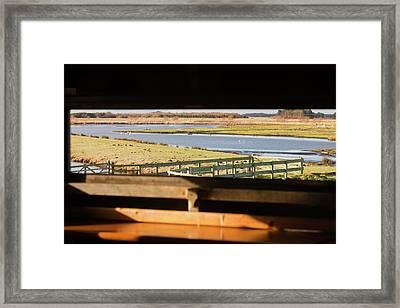 Martin Mere Bird Reserve Framed Print by Ashley Cooper