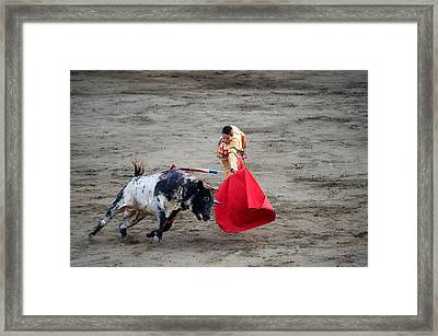 Matador And A Bull In A Bullring, Lima Framed Print by Panoramic Images
