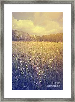 Meadow Framed Print by Jelena Jovanovic