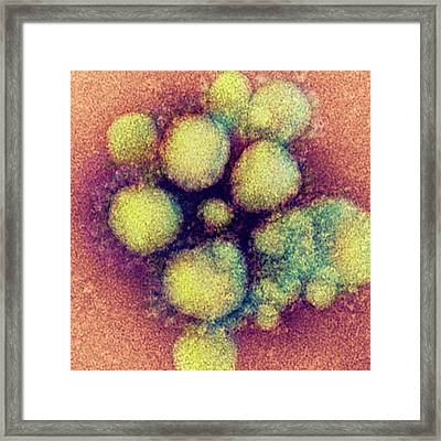 Mers Coronavirus Framed Print by Ami Images
