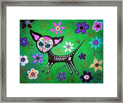 Mexican Chihuahua El Perrito Framed Print by Pristine Cartera Turkus
