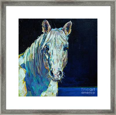 Midnight Ride Framed Print by Patricia A Griffin