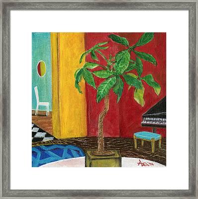 Money Tree In The Music Room Framed Print by Adelita Pandini